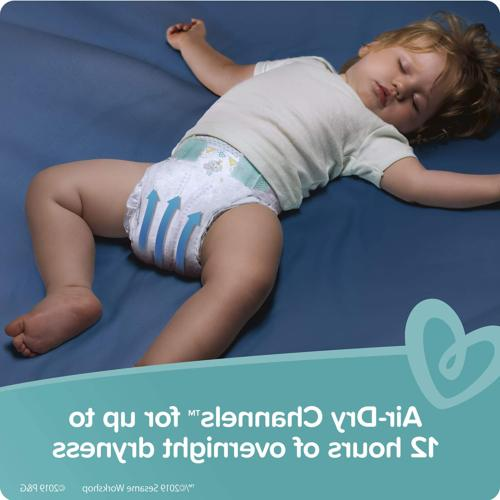 Diapers to 6 Dry Pack