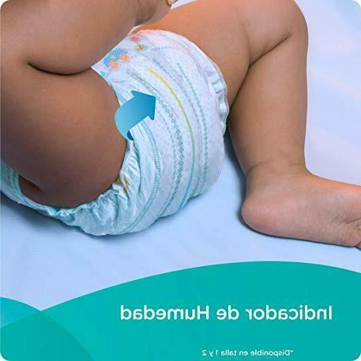 Diapers Size Count - Pampers Dry Disposable Baby Giant